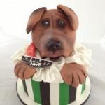 SPCA Cake